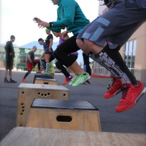 Box Jumps_Beast 24
